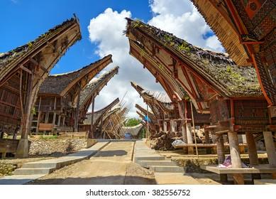 Tongkonan traditional rice barns and house in Palava village. Tana Toraja, Sulawesi. Indonesia