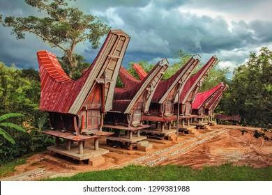 Tongkonan traditional rice barns in village. Tana Toraja, Sulawesi. Indonesia