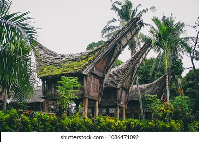 Tongkonans, large ancestral wooden houses, remiscent of boats. Typical houses in the Toraja region in southern Sulawesi, Indonesia.