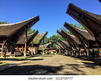 Tongkonans in Tana Toraja - Sulawesi Island (Indonesia)