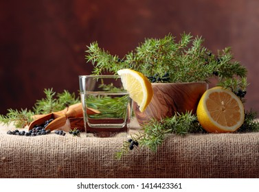 Tonic with lemon and a branch of juniper with berries. Copy space for your text.