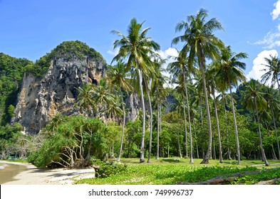 Tonsai beach, between Ao Nang beach and Railay beach in the Andaman Sea, Krabi province, Thailand