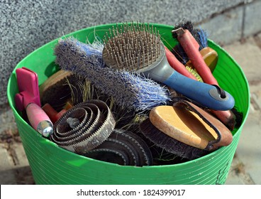Tools for horses in a bucket - Shutterstock ID 1824399017
