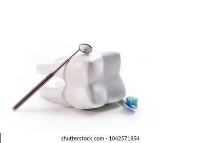 A tooth model with a mirror and a toothbrush in a white background