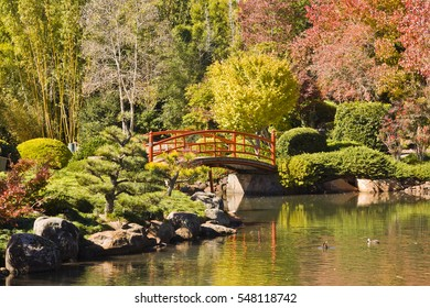 Toowoomba, Queensland, Australia: 8 June 2006 - The Japanese Garden in Toowoomba, Queensland, Australia in autumn colours.