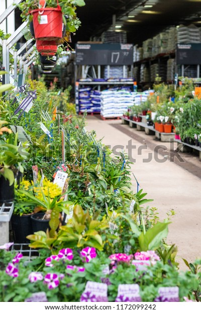 Toowoomba Queensland Australia 942018 Bunnings Garden Stock Photo