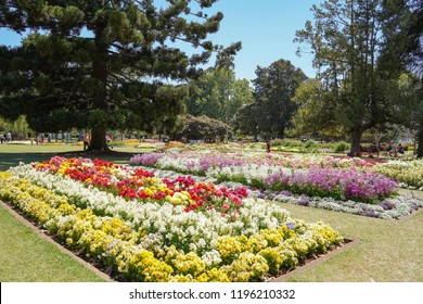 Toowoomba, Queensland/ Australia - October 2 2018: Toowoomba Queens Park and Botanic Gardens
