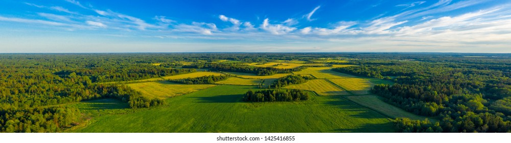 Top aerial panoramic view of green fields and meadows in summer. Abstract landscape with lines of fields, grass, trees, sunny sky and lush foliage. Landscape with drone