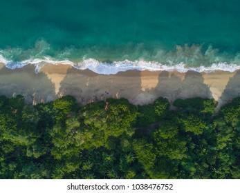 top aerial view of the beautiful beach Malpaso full of vegetation, located next to the beach of Sayulita