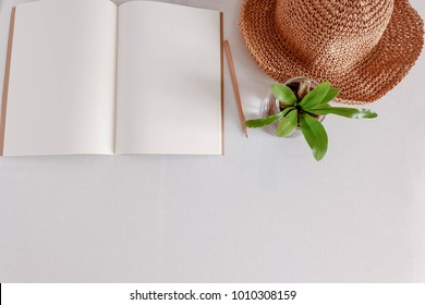 Top of blank opening notebook with pencil, brown wide-shoulder hat and plant on pot on white background in copy space and flat lay concept.