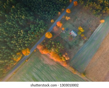Top down aerial view on farm buildings in colorful forest. Beautiful landscape.