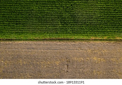Top down aerial view of two contrasting agriculture fields