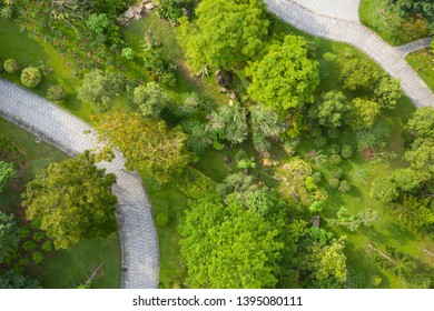 Top down detail view of park with trees