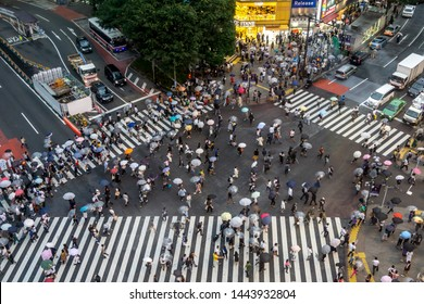 top down view of famous shibuya crossing taken late at night during rainy day. Taken in Tokyo, Japan. June 29th 2019