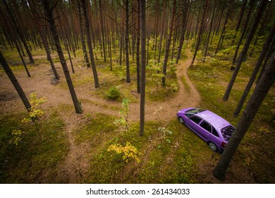 Top Down View on Car in a Forrest
