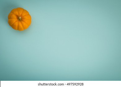 Top Down View of  One Cute and Colorful Thanksgiving or Halloween Pumpkin alone on Teal Blue rustic Painted Wood Board Background with extra blank room or space for copy, text, your words.