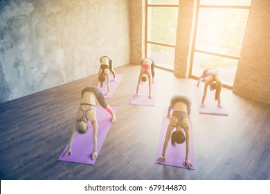 Top up of five young fit yoga ladies, making stretching exercise on the purple mats, so slim and healthy, wearing modern sport outfit, barefoot in modern studio