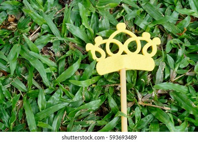 Top or flat lay view of  Photo booth props a yellow crown on a green grass background. Birthday party and weddings.