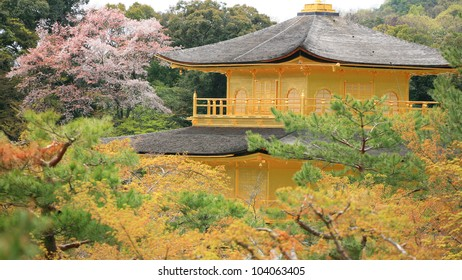 Top of golden pavilion temple, Kinkakuji, with colorful autumn trees at Kyoto, Japan