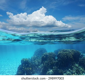 Top half with blue sky and cloud, and underwater split by waterline, a coral reef with sandy seabed, Caribbean sea, Costa Rica