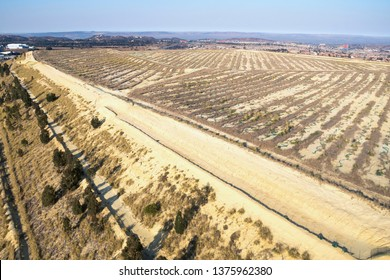 Top of a mine dump where rehabilitation with plants has been started