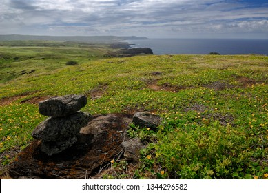 Top of Molokai sea cliffs covered in yellow flowered Sida Fallax