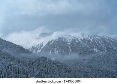 The top of the mountain comes out through the cloud. Winter forest on the mountainside. Winter mountain landscape. Low cloud cover in the mountains.