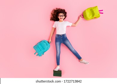 Top view above high angle flat lay flatlay lie concept full length body size view of nice funny cheerful funny girl standing on pile book carrying bright bags isolated on pink pastel color background