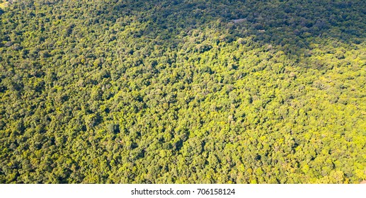 Top view Aerial photo from flying drone over Green forest.