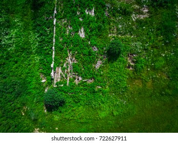 Top view aerial shot of abandoned house in the russian green forest