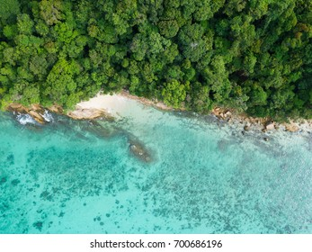 Top view or Aerial view of tropical island forest and emerald clear water of Koh Lipe in southern Thailand
