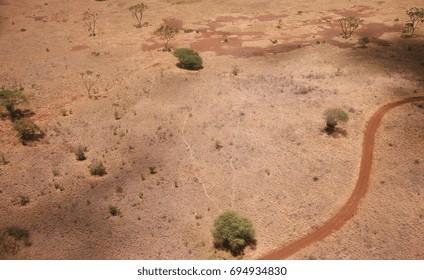 Top view of African savannah