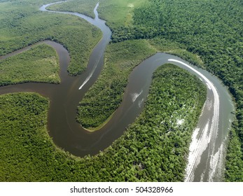 Top View of Amazon rainforest