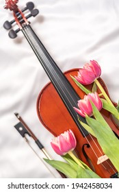 Top view of antique violin on white cloth with tulips on top. Elegant musical instrument and bow. Concept of artistry, jazz and blues music, concert, spring and art