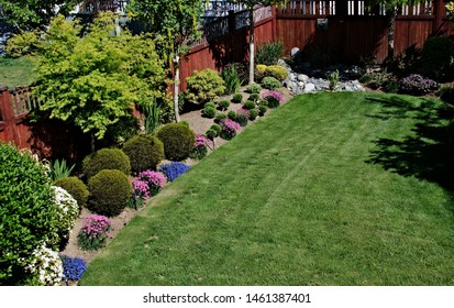 Top view backyard garden landscape formal design elements topiary shrubs green lawn grass area texture background