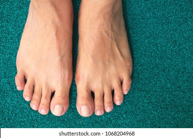 Top view barefoot on green background. Female feet.