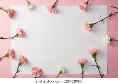 top view of beautiful carnation flowers and blank card on pink background