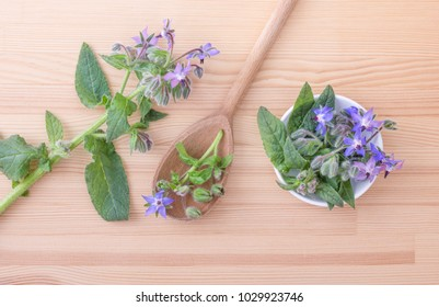 top view of Bowl and wooden spoon with Borage on a wooden background