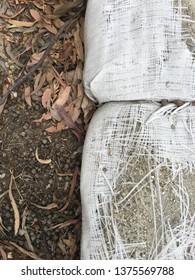 Top view of broken sandbags with wet soil full of eucalyptus seeds and leaves to the left.