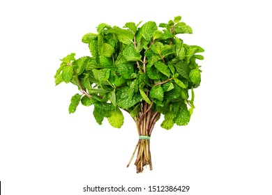 Top view bunch of fresh green peppermint isolated at white background.