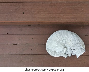 top view of a cat doll on wood terrace
