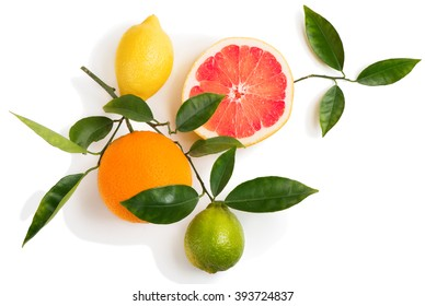 Top view of citrus fruits (grapefruit, orange, lemon, lime) on a branch with green leaves isolated on white background.