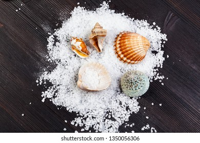top view of coarse grained Sea Salt and seashells on dark brown wooden board