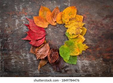 Vista superior de las hojas de otoño coloridas círculo sobre mesa rústica de madera
