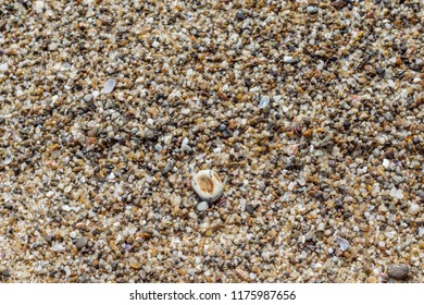 Top view of colorful sand and pebbles, wet by sea water. Natural marine pattern, blue beige orange color, copy space for text, shallow depth of focus. Fresh summer holiday inspiration, relaxation mood