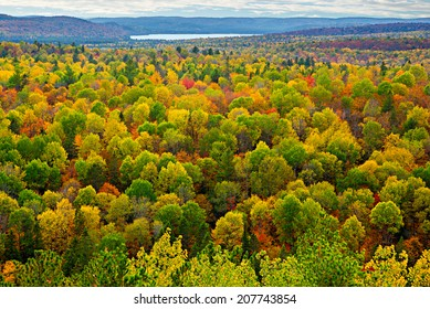 A top view of colourful forest trees and lake in the autumn season.  Scene from Lookout Trail Algonquin Park Ontario, Canada