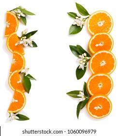 Top view of composition with the borders made of the orange fruit and blossom of orange tree isolated on white background.