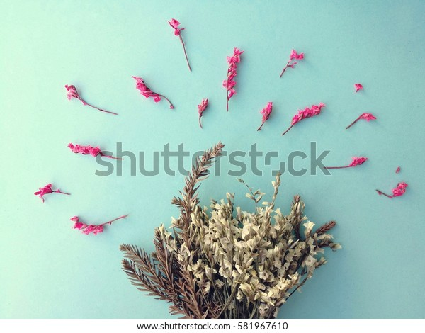 Top view Dried gypsophila on blue background, creative flay lay flowers idea, hipster and vintage nature