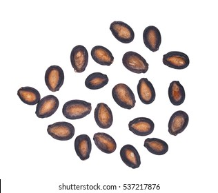 top view of dried watermelon seeds isolated on white background