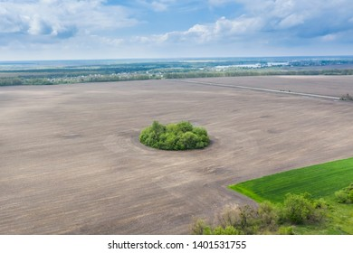 Top view drone shot of a green field